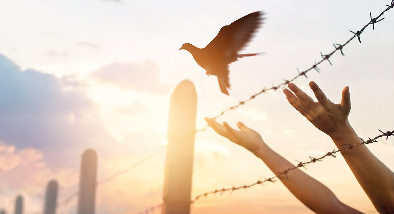 Einheit ohne Religionsfreiheit?