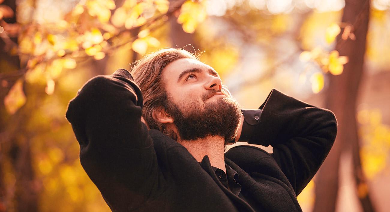 Wie Blätter im Herbst